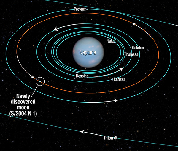 Orbit of S/2004 N 1, Neptune's newly discovered moon